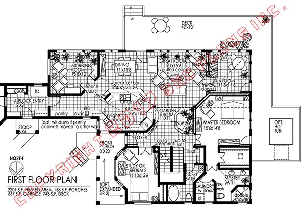 Sun plans garden atrium for Homes with atriums floor plans